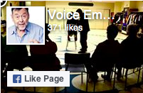 voice-emergent-fb-icon